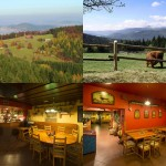 Tanie hotele – Zielona Góra