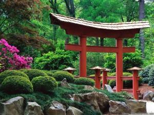 wycieczka-do-japonii-6